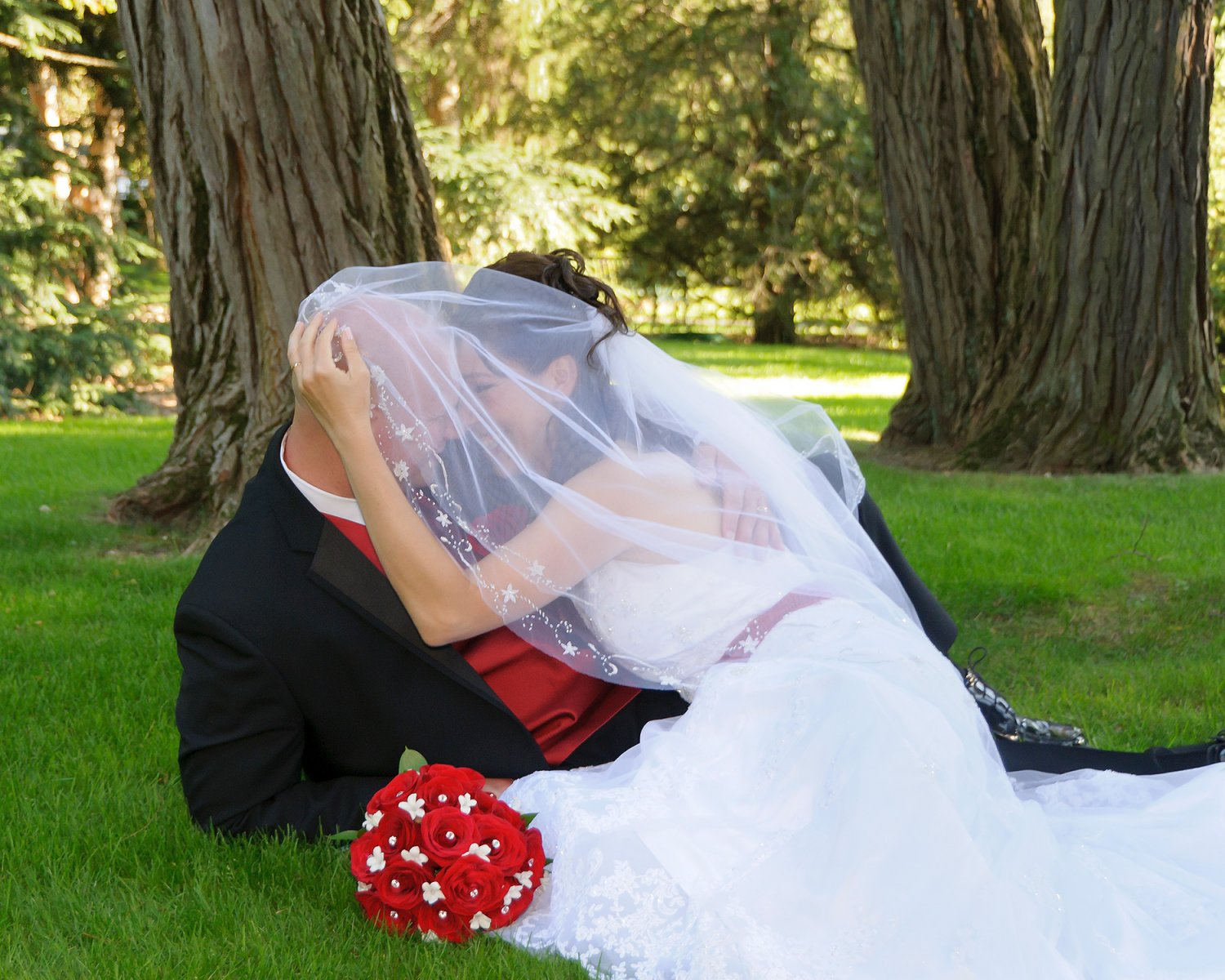 Why Hire a Pro Photographer for a Wedding wedding,